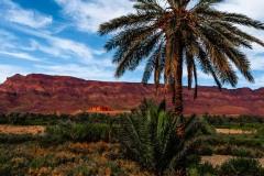 Kingdom-of-Morocco-6790