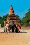Myanmar-2431