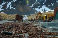 Antarctic-and-Sub-Antarctic-landscanpes-11
