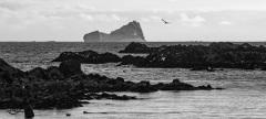 Antarctic-and-Sub-Antarctic-landscanpes-12