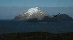 Antarctic-and-Sub-Antarctic-landscanpes-18