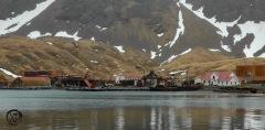 Antarctic-and-Sub-Antarctic-landscanpes-8