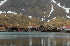 Antarctic-and-Sub-Antarctic-landscanpes-8