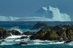 Antarctic-and-Sub-Antarctic-landscanpes-14